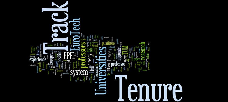 Tenure track word cloud
